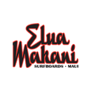 maui surfboard rentals elua icon maui surfboard  rentals sup   stand up paddle board rental